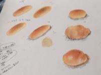 p どれパン.jpg